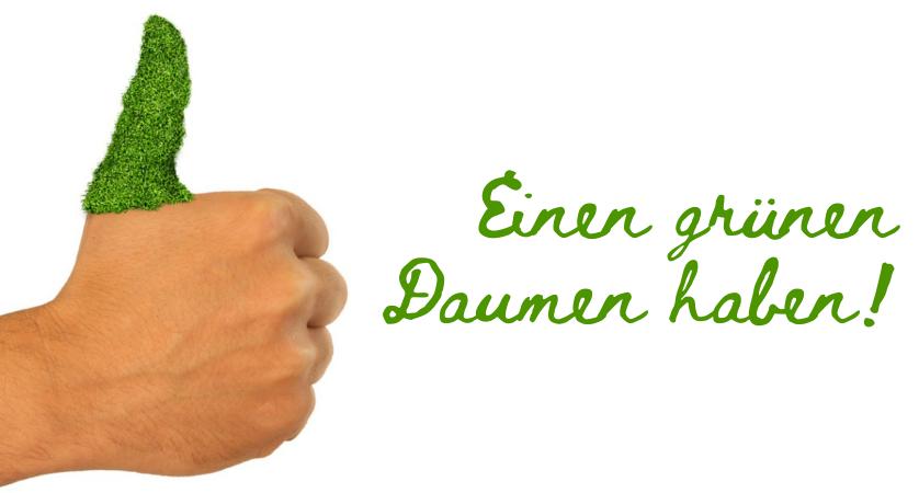 izrazi i fraze u nemačkom jeziku